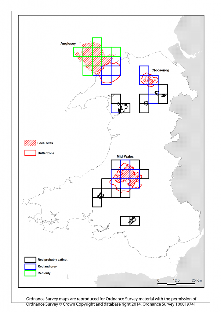 Map of red squirrel distribution in Wales