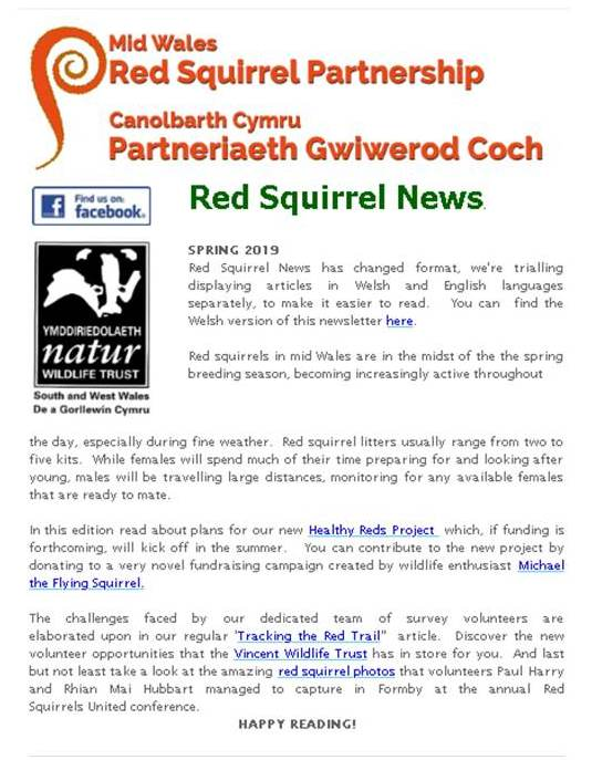 Newsletters - Red Squirrel Partnership | Partneriaeth Gwiwerod Coch