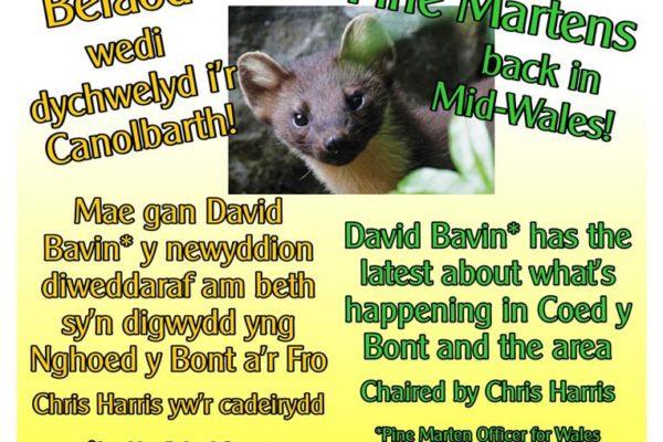 Coed Y Bont poster for Pine Marten Talk